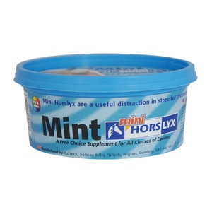Horselyx™ Mint Mini Horselyx
