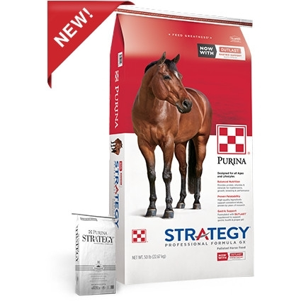 Buy 4 Bags Get One FREE on Purina Strategy!!