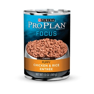 Pro Plan Focus Chicken and Rice 13 Oz. Canned Dog Food