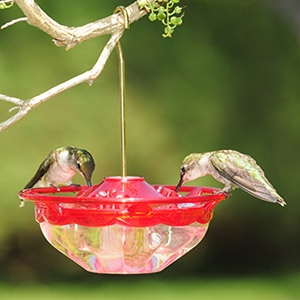 Aspects® HummBlossom™ Hummingbird Feeder