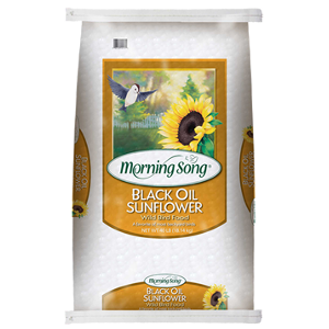 Black Oil Sunflower Wild Bird Food 50 Pounds