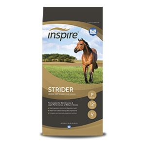 Blue Seal® Inspire Strider