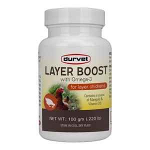 Layer Boost Supplement for Poultry