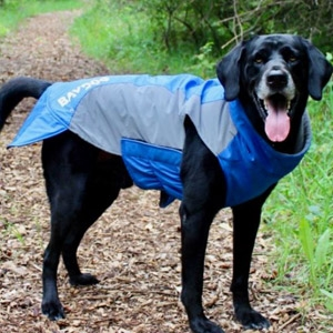 Baydog® Glacier Bay Dog Coat