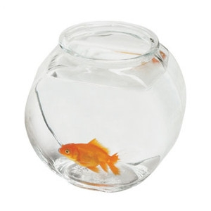 1/2 Gallon Drum Glass Bowl- 2pk