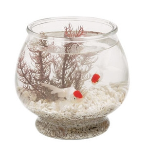 1/2 Gallon Footed Glass Bowl