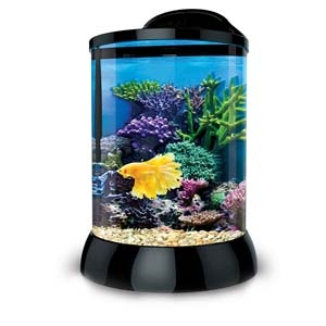 AquaTerra 2 Gallon- Black