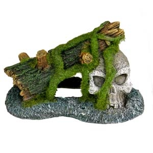 Exotic Environments® Skull with Moss