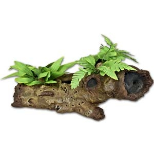 Exotic Environments® Mopani Wood w/ Silk Style Plants – Small
