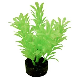 ColorBurst Florals® Exotic Mini Plant – Neon Green
