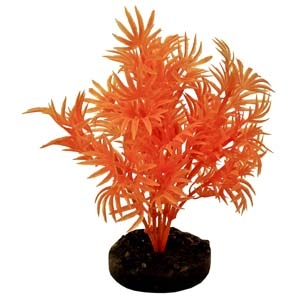 ColorBurst Florals® Dragon Leaf Plant – Neon Orange