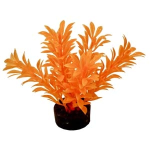 ColorBurst Florals® Exotic Mini Plant – Neon Orange