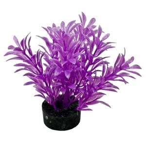 ColorBurst Florals® Exotic Mini Plant – Neon Purple