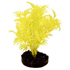 ColorBurst Florals® Dragon Leaf Plant – Neon Yellow