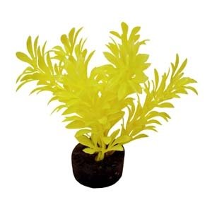 ColorBurst Florals® Exotic Mini Plant – Neon Yellow