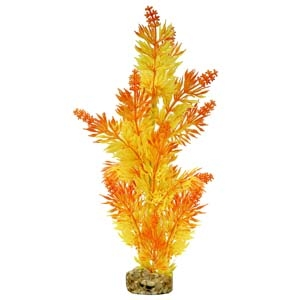 ColorBurst Florals® Gravel Base Plant – Large Bush Plant – Orange