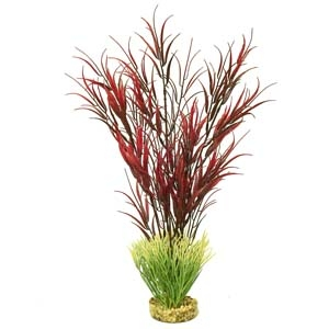 ColorBurst Florals® Gravel Base Plant – Wild Mountain Plant – Red