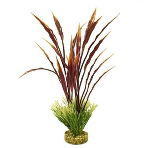 ColorBurst Florals® Gravel Base Plant – Atoll Grass Plant – Red/Green