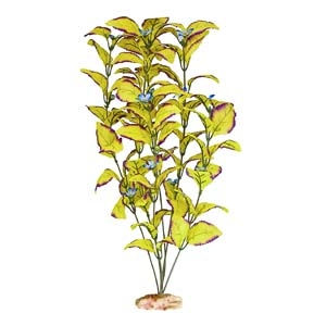 ColorBurst Florals® Flowering Willow Leaf