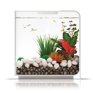 Oase® biOrb® Flow 15L Fish Tank