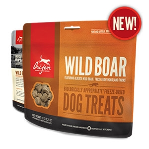 Orijen Freeze-Dried Wild Boar Treats for Dogs- 1.5oz
