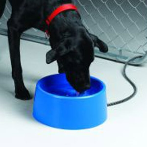 5 Quart Plastic Heated Pet Bowl