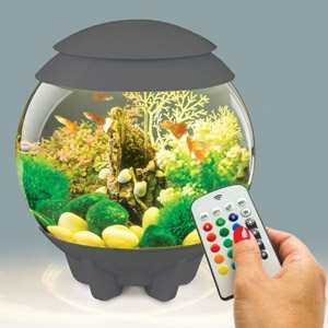 Oase® biOrb® Halo 15 4-Gallon Aquarium