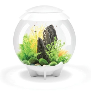 Oase® biOrb® Halo 130 8-Gallon Aquarium