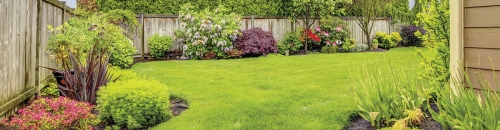 Neutralize an Acidic Lawn