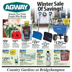 Winter Sale of Savings