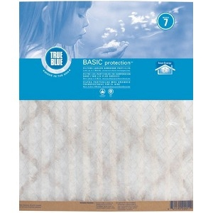 True Blue® Basic ProtectionTM Air Filter