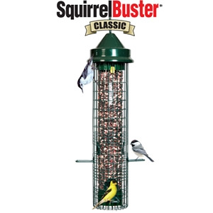 Squirrel Buster Wild Bird Feeder Classic, Squirrel Proof