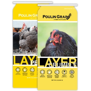 Poulin Grain Layer Products
