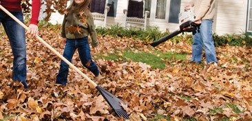 It's Fall Cleanup Month at All In One Rentals!
