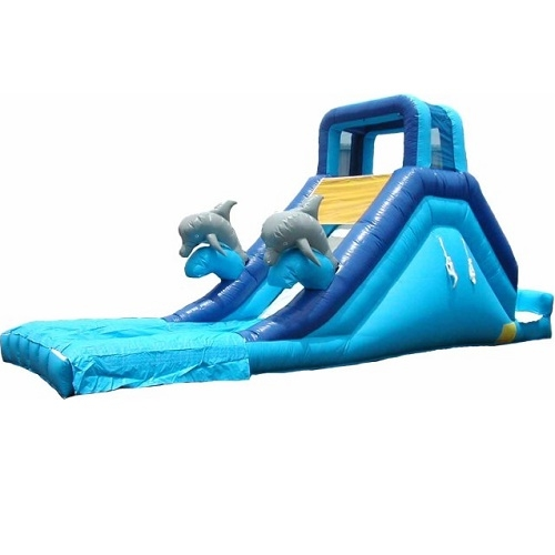 Spacewalk Dolphin Inflatable Water Slide | Wilton Springs True Value