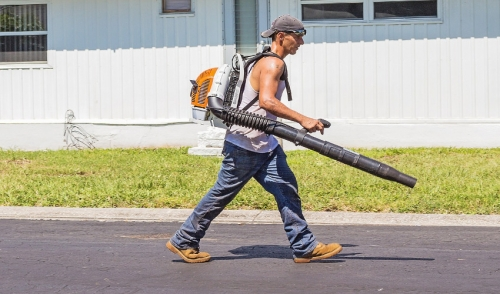 What You Need to Know About Leaf Blowers