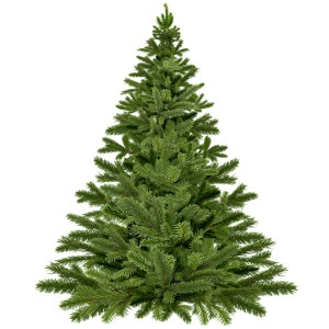 $5 Off A 6' - 8' Real Christmas Tree