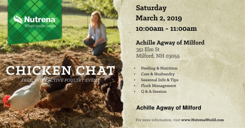Chicken Chat - Free Interactive Poultry Event