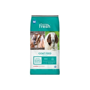 Blue Seal Home Fresh Goat Herd 18 Feed