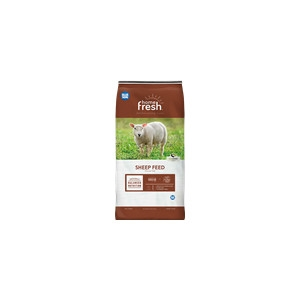 Blue Seal Home Fresh® 20 Sheep Starter Grower 50 lb.