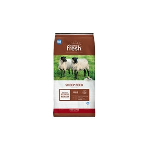 Blue Seal Home Fresh 20 Sheep Starter Grower 45DQ 50 lb.