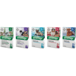 Advantage Fast Acting Flea Treatment-Multiple Sizes Available