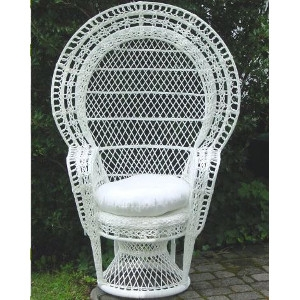 Kozy Kingdom Outdoor Peacock Chair