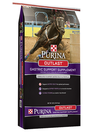 Equine Senior & Purina Supplements