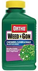 Ortho® Weed B Gon™ Chickweed, Cloer & Oxalis Killer for Lawns 16Oz Concentrate