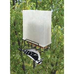 Songbird Essentials® Suet Saver Feeder