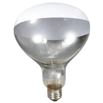 Fiet Electric® 250W/120V Clear Heat Lamp Bulb
