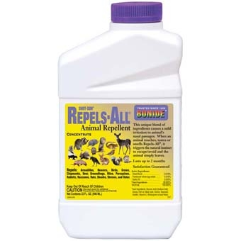 Bonide® Repels-All® Animal Repellent (Quart-Concentrate)