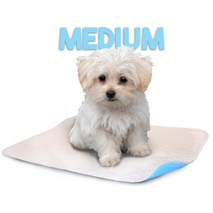 Lennypad 2 Pack Medium Reusable Potty Pad