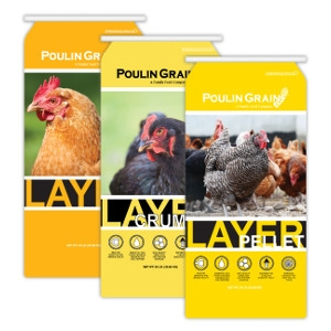 Ending Soon! Poulin Grain Egg Layer Feed Sale